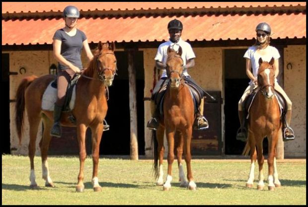 3 riders on 3 Arabian horses 1
